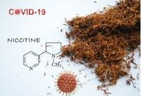 Tabagisme, nicotine et COVID
